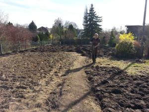 Nach 20 m³ kann man ja mal endlich mit der Arbeit anfangen. Einfach noch mal ein bisschen umgraben.