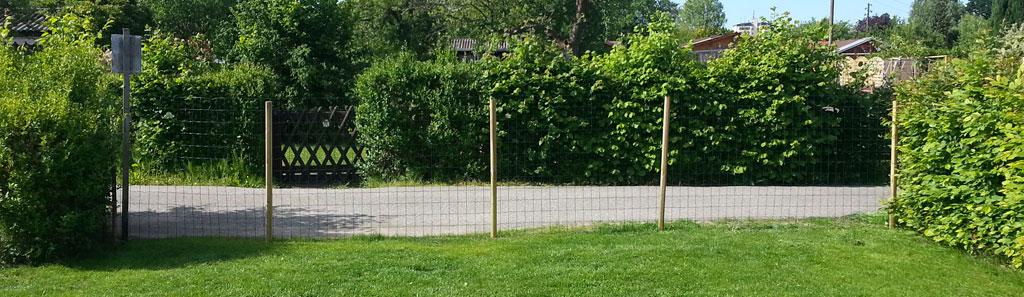 Keine Mauer, aber immerhin ein Zaun (Bild: © O.Thiele)