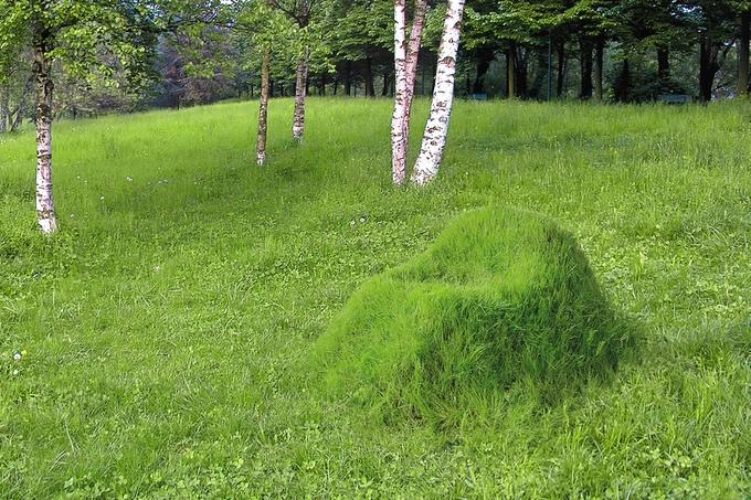 Der gewachsene Gartenstuhl - TERRA! (Bild: kickstarter/ © Studio Nucleo)