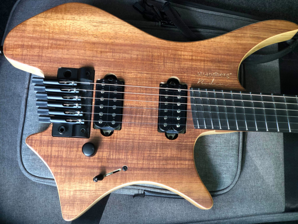 The original Picture of vom Strandberg Plini